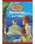 OPERACION CASTILLO